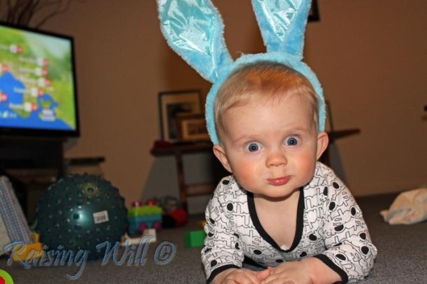 Bunny Ears...