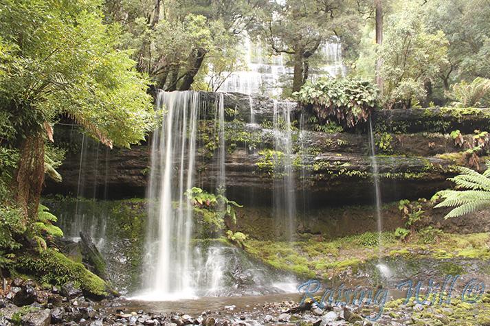 Russell Falls - amazing!