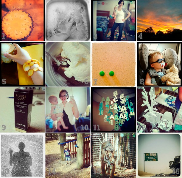 My week on Instagram Jan 14-20